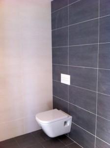 baño gris inodoro suspendido