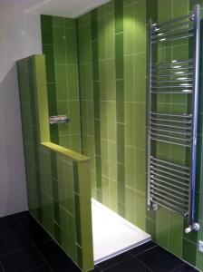 baño verde ducha